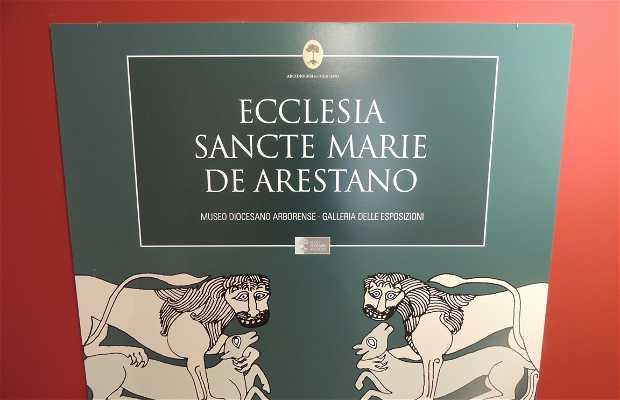 Museo Diocesano Arborense