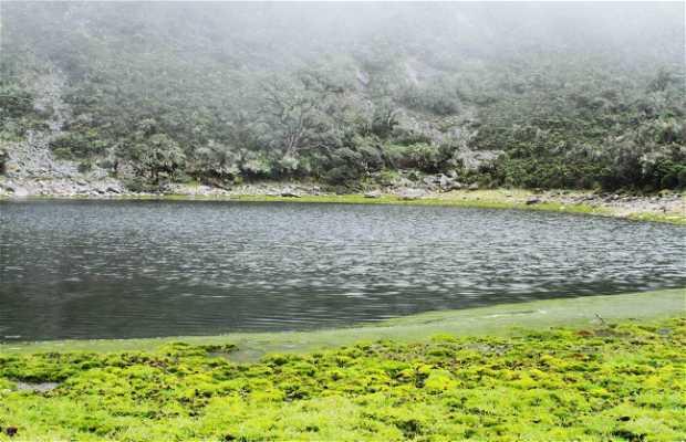 Laguna La Verdosa