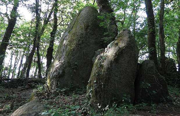 Le site de la roche