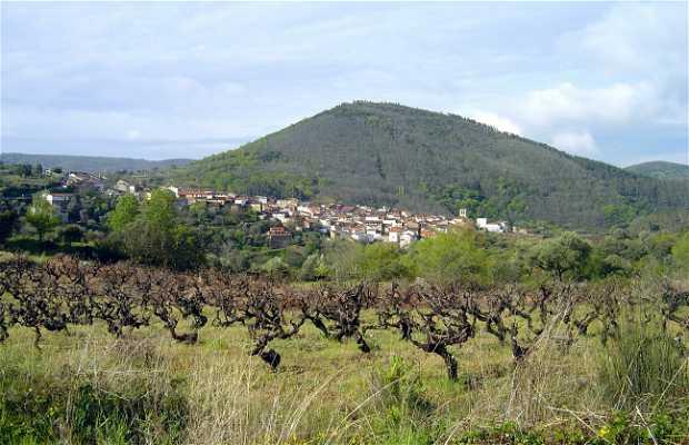 El Castañar de San Esteban de la Sierra