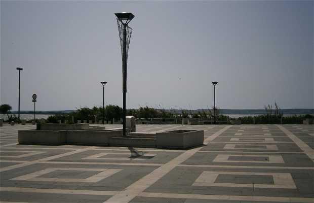 Piazza Stagno