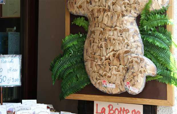 Via Olina, funghi et pasta