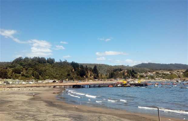 Playa Colrura