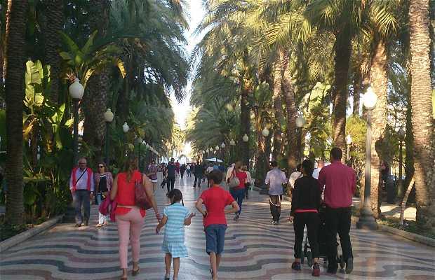 Paseo d'Alicante