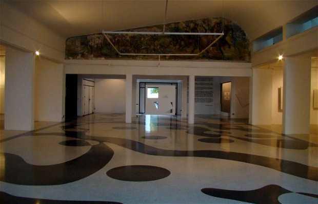 Museo de Arte Acarigua Araure (MAAA)