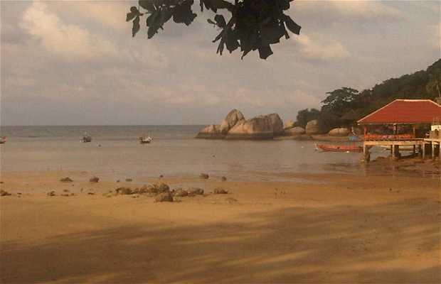 Barco de Songserm a Koh Tao