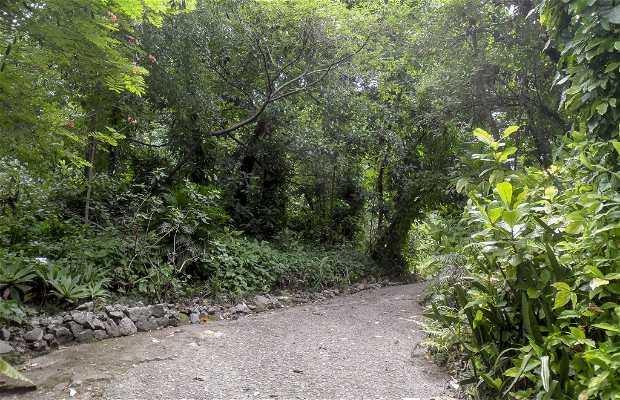 Parque do Martelo