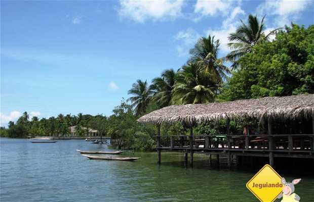 Ilha do Sapinho