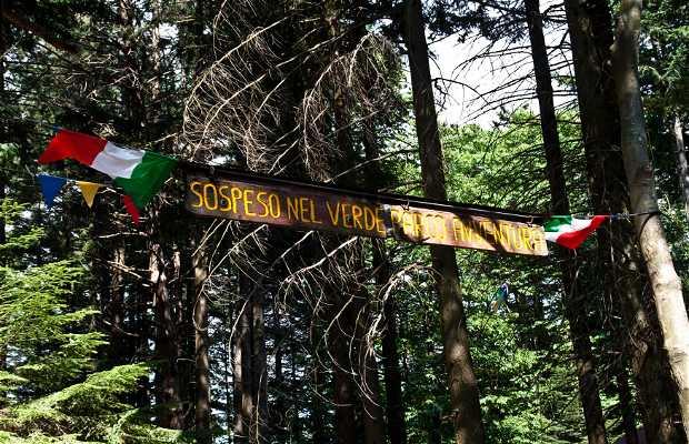 Parque Adventura Sospeso nel Verde
