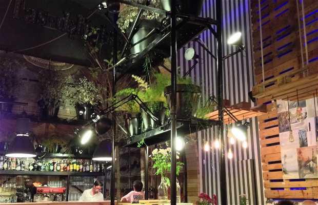 Las Delicias Live music restaurant
