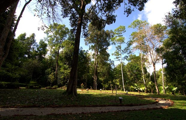 Jardínes Botánicos
