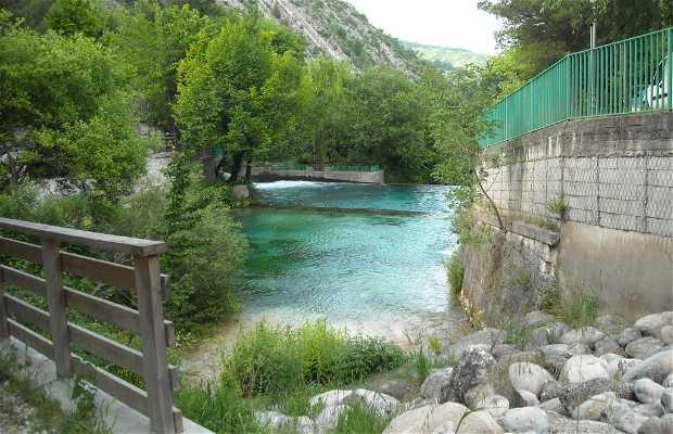 Springs of Verde river