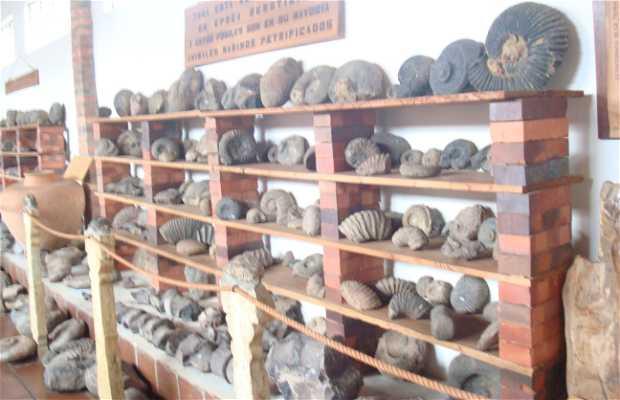 El museo de la Momia