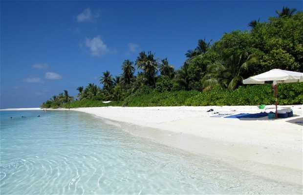 Aarah Island