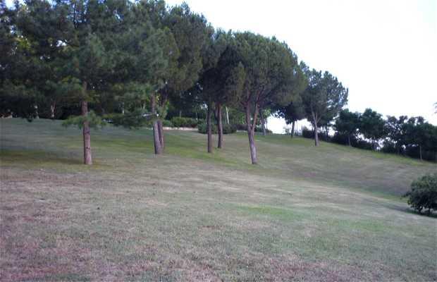 Parc de Enrique Tierno Galván