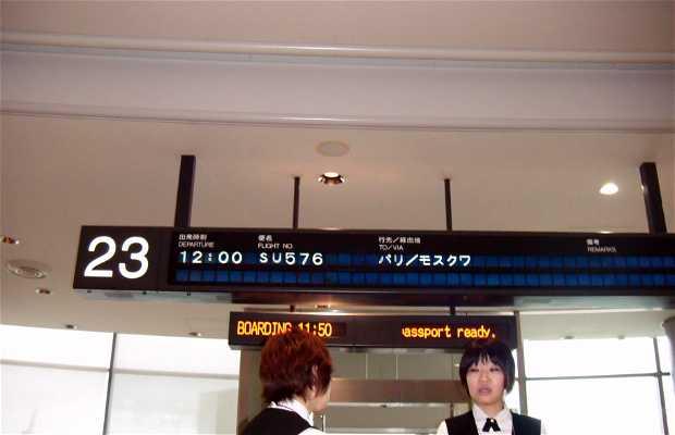 Aeropuerto Internacional de Narita (Narita Kokusai Kūkō)