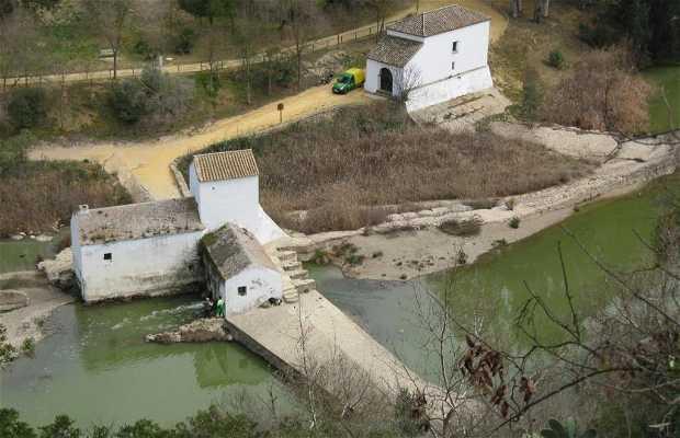 Benarosa Mill