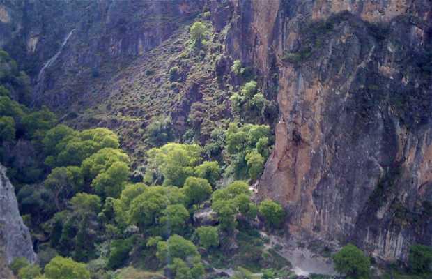 Route Los Cahorros de Monachil