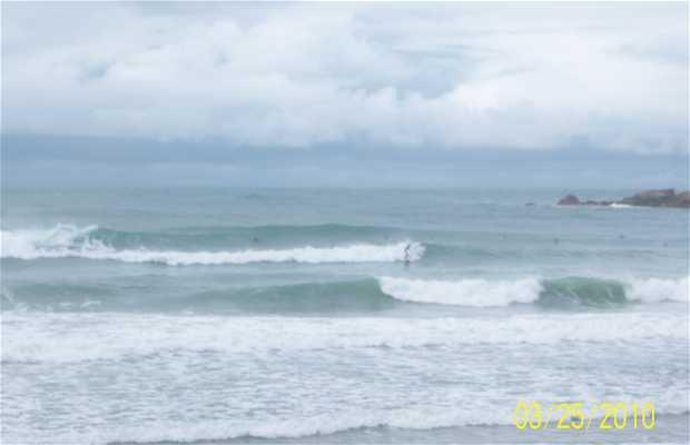 Parador Swell Praia da Rosa Brasil