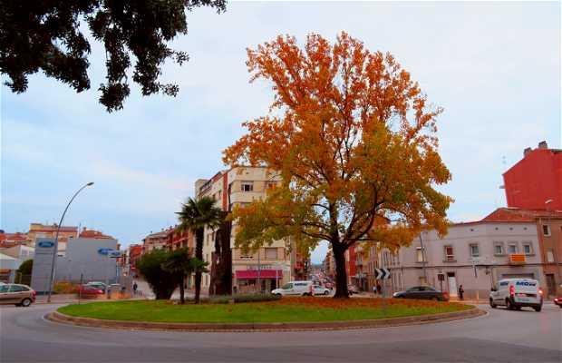 Plaza de la Creu