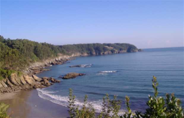 Playa de Sacido
