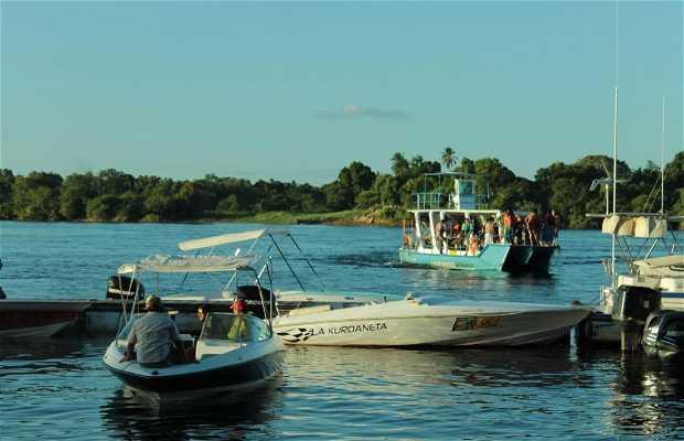 Catamarán Puerto Orinoco