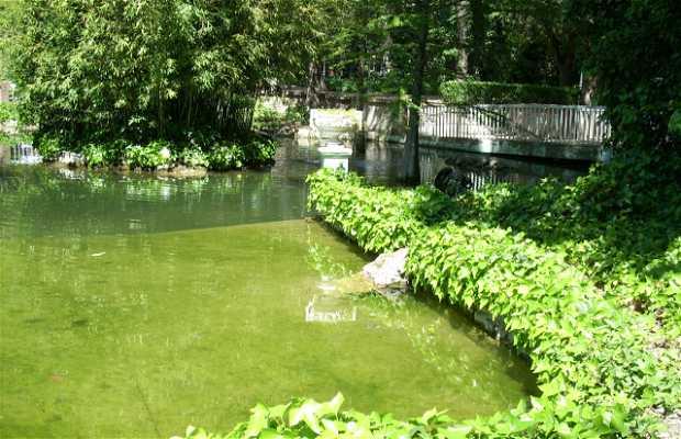 Miguel Servet Park
