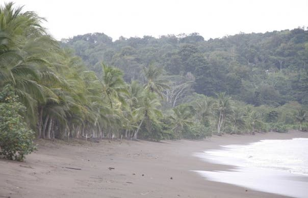 Bahía Drake