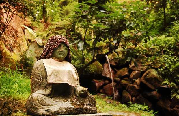 Kasugayama Bosque Primaveral