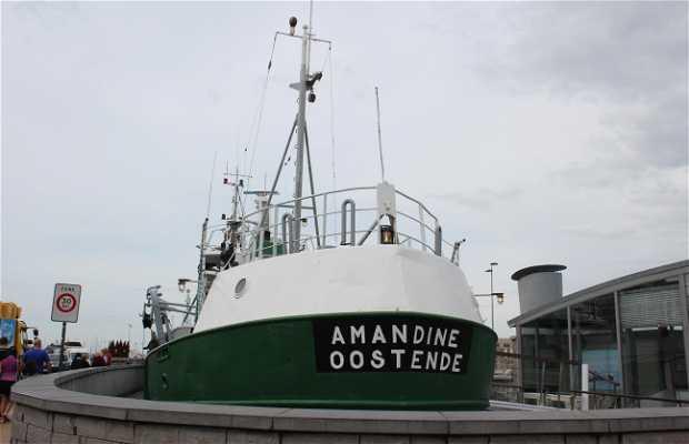 Bateau Amandine
