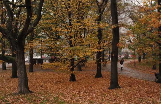 Parque Swietokrzyski