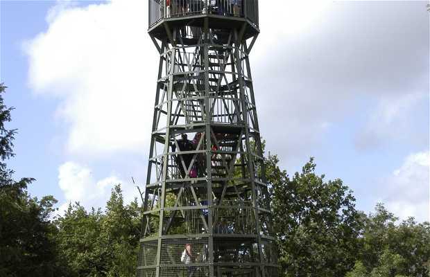 Point de vue de la tour