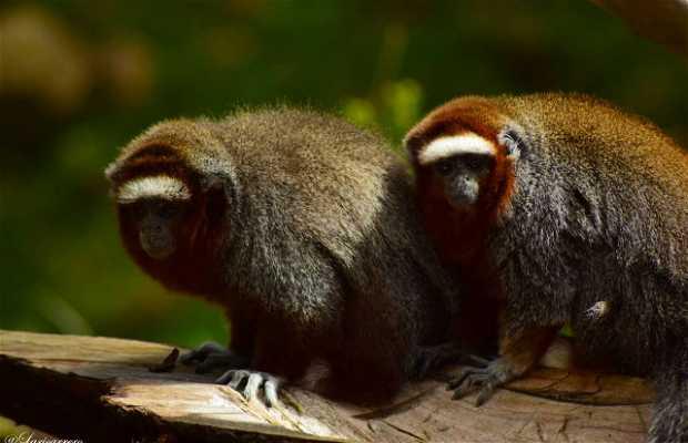 Parque Zoológico Guátika