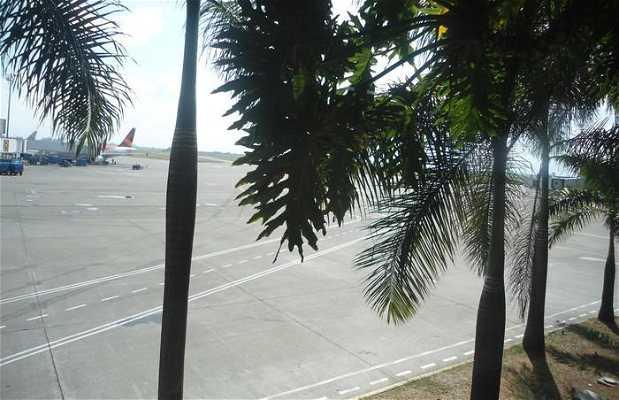 Alfonso Bonilla Aragón International Airport