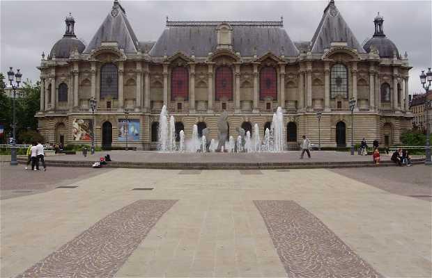 Museo delle Belle Arti di Lille