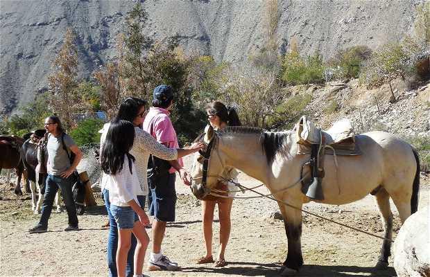 Inche Mapu Ecoturismo