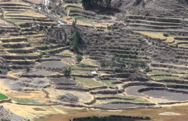 Mirador de Antahuilque, Colca