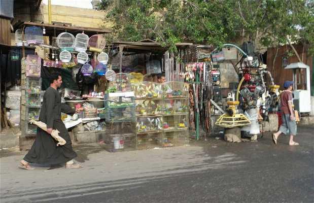 Barrio El Sayeda