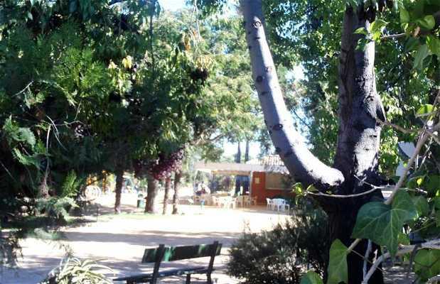Parque de la Toya