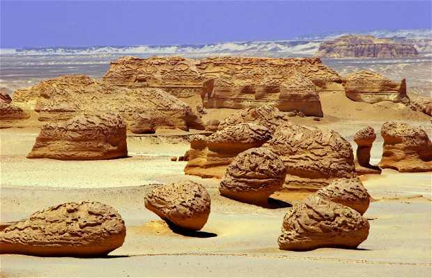 Valley of the Whales - Wadi Al - Hitan