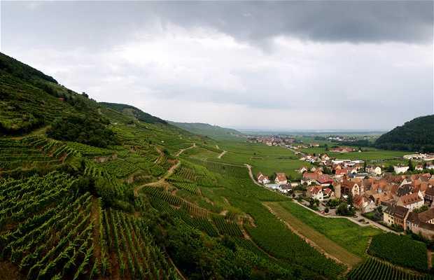 Valle de Kaysersberg