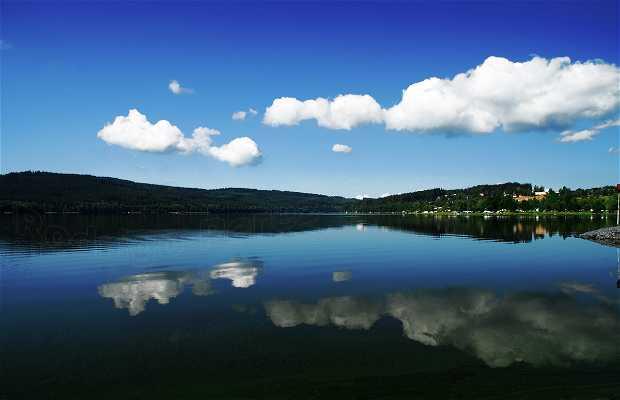 Dam or reservoir of Lipensky