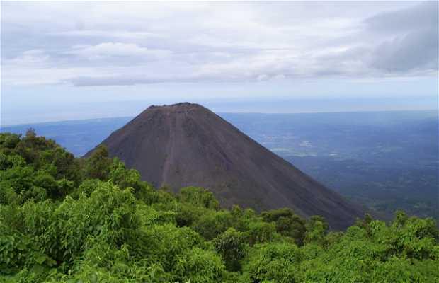 Cerron Verde