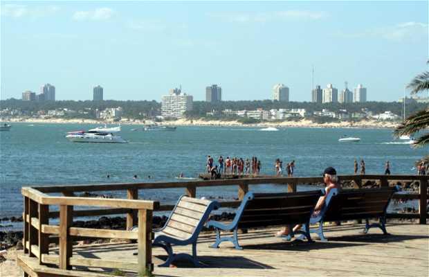 Rambla de playa manza