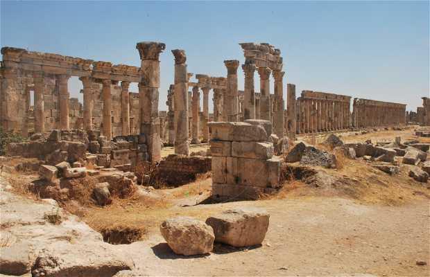 Ruinas de Apamea