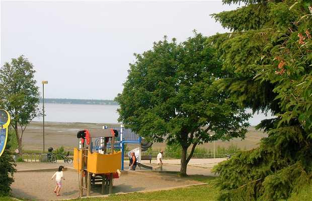 Elderberry Park