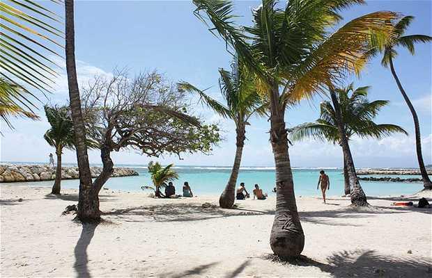 Playa Caravelle