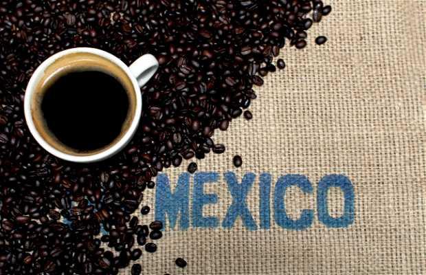 Cafe Nuevo Mundo