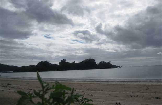 OAKURA BAY, northland
