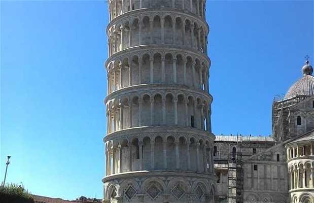 Pique-nique à l'ombre de la tour de Pise